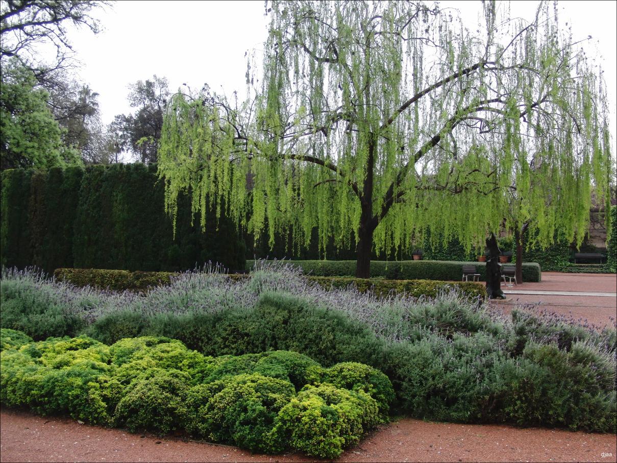Jardines sin mantenimiento ideas de disenos for Mantenimiento de jardines