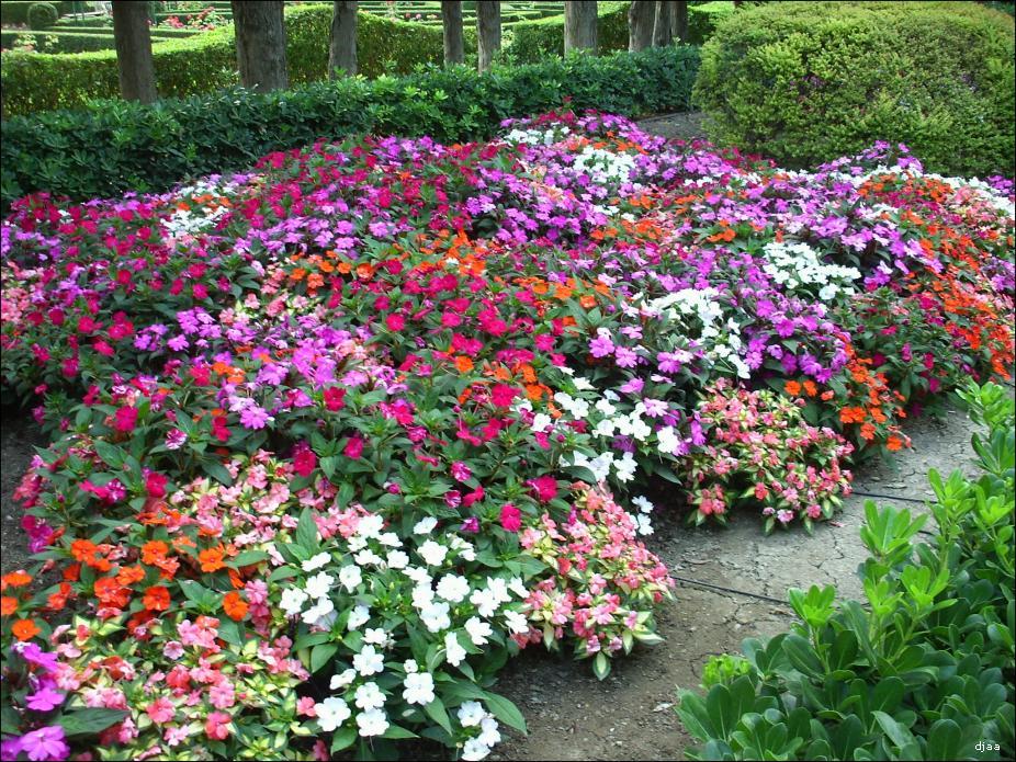 Jardines de monforte - Tipos de jardines ...